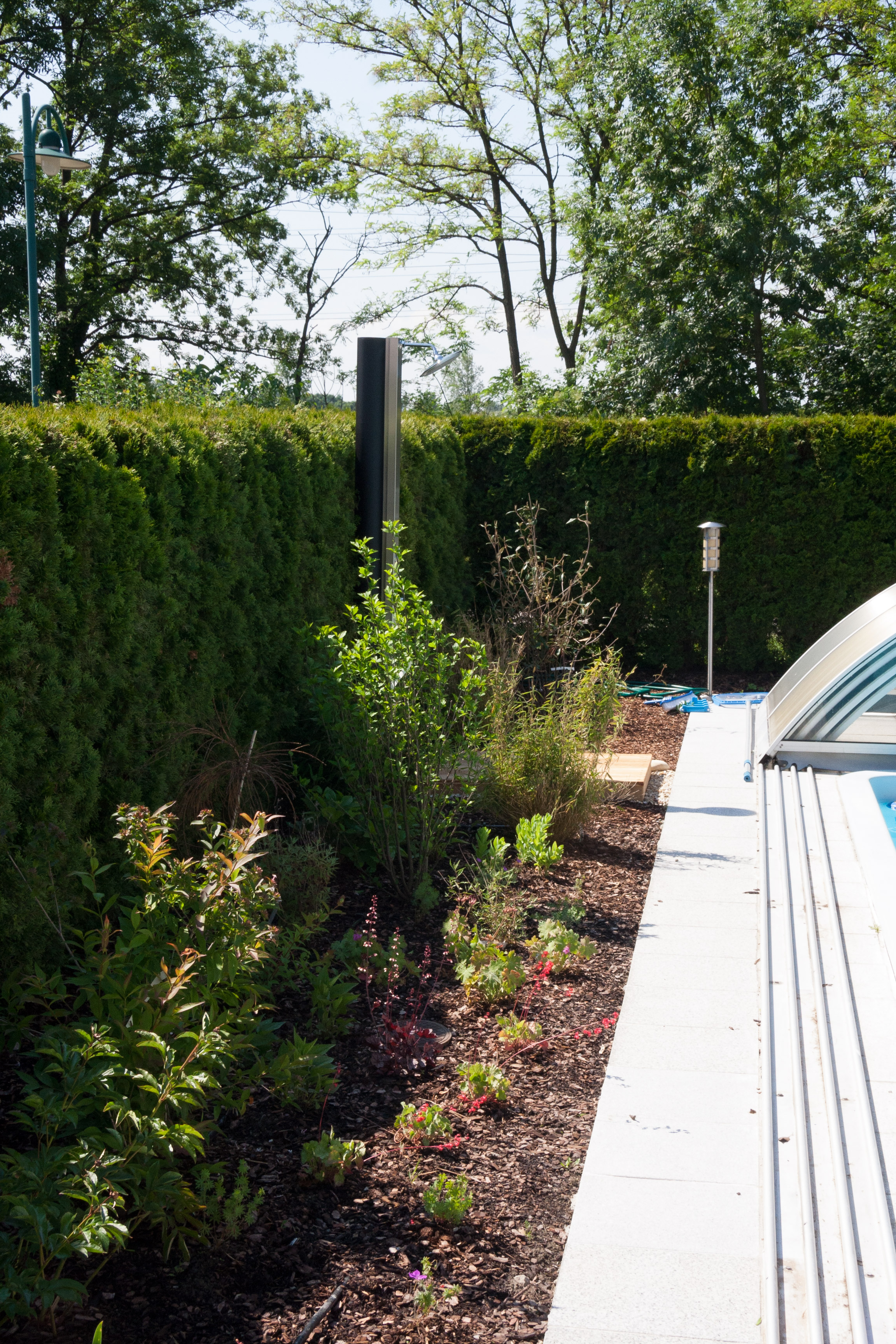 Begrünung zwischen Pool und Hecke